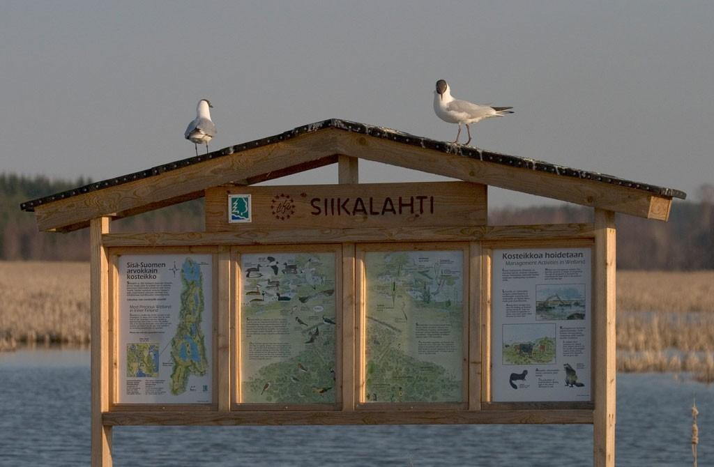 Залив Siikalahti
